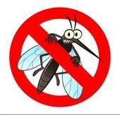 Mosquito precvention