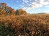 Okehocking Powwow field in the fall