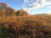 Okehocking Powwow field in the fall