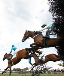 Photo by Jim Graham of Radnor Races